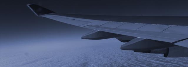 flight_blue